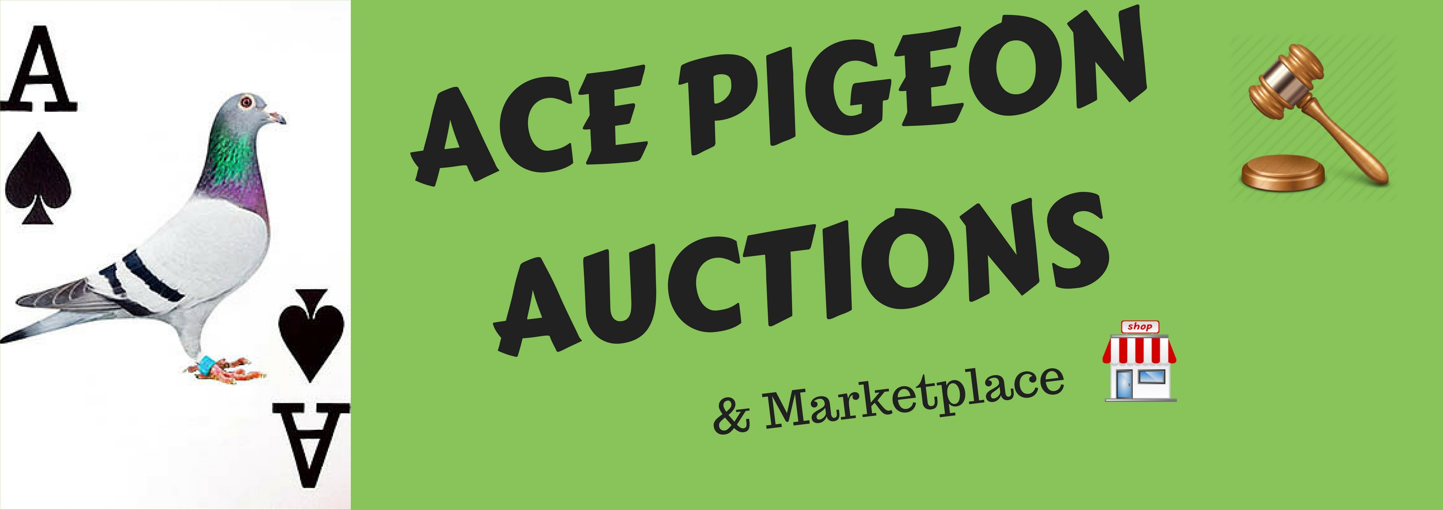 ACE PIGEON AUCTIONS